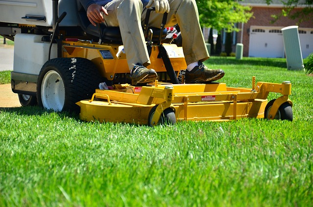 Walker Mower Close Up